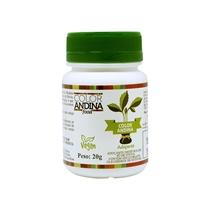 Color Andina Adoçante Em Pó 100% Natural Stévia